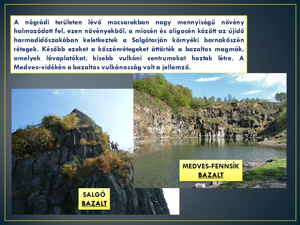 A nógrádi területen lévő mocsarakban nagy mennyiségű növény halmozódott fel, ezen növényekből, a miocén és oligocén között az újidő harmadidőszakában