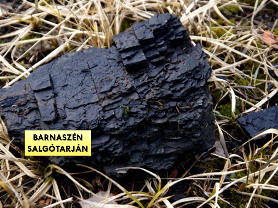BARNASZÉNSALGÓTARJÁNBARNASZÉNSALGÓTARJÁN