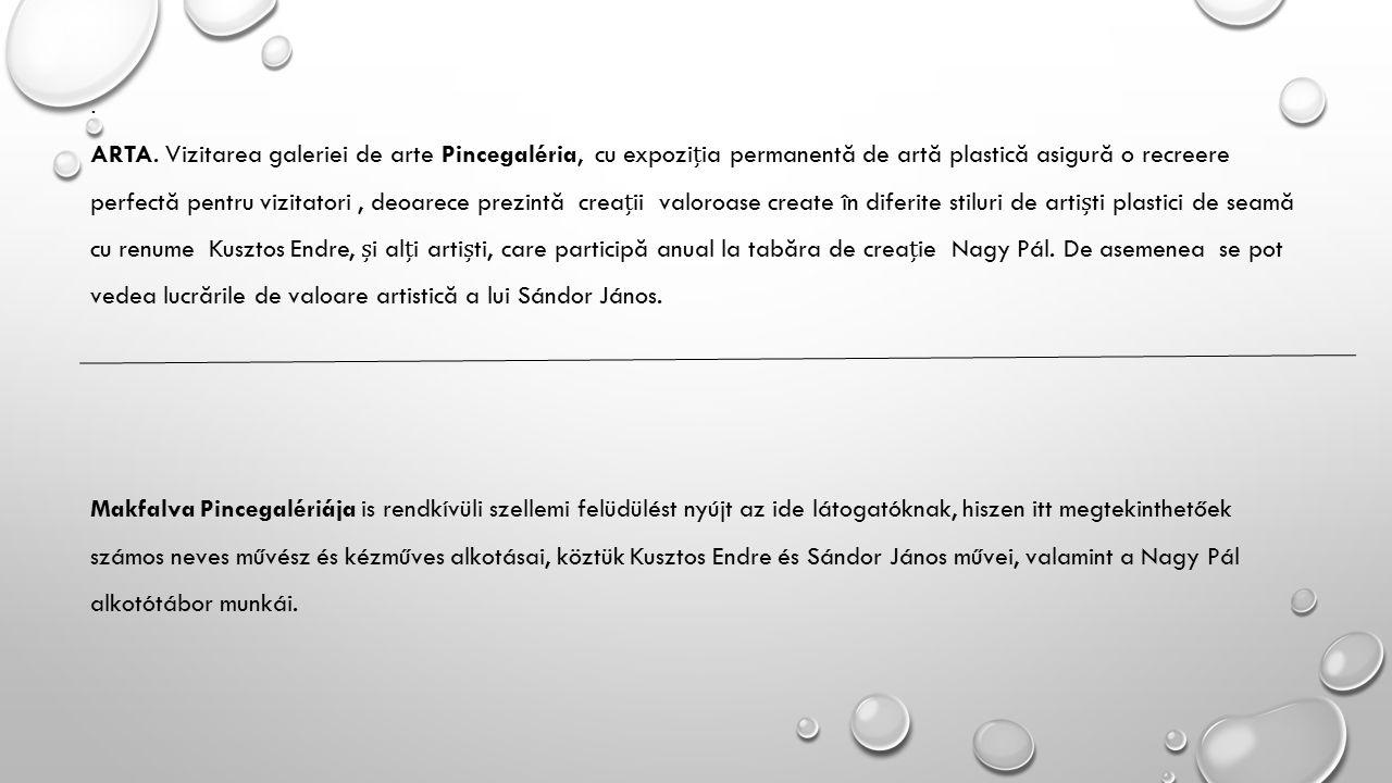 Makfalva Pincegalériája is rendkívüli szellemi felüdülést nyújt az ide látogatóknak, hiszen itt megtekinthetőek számos neves művész és kézműves alkotásai, köztük Kusztos Endre és Sándor János művei, valamint a Nagy Pál alkotótábor munkái.