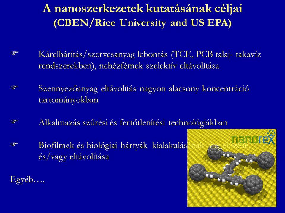 A nanoszerkezetek kutatásának céljai (CBEN/Rice University and US EPA)  Kárelhárítás/szervesanyag lebontás (TCE, PCB talaj- takavíz rendszerekben), nehézfémek szelektív eltávolítása  Szennyezőanyag eltávolítás nagyon alacsony koncentráció tartományokban  Alkalmazás szűrési és fertőtlenítési technológiákban  Biofilmek és biológiai hártyák kialakulásának megelőzése, és/vagy eltávolítása Egyéb….