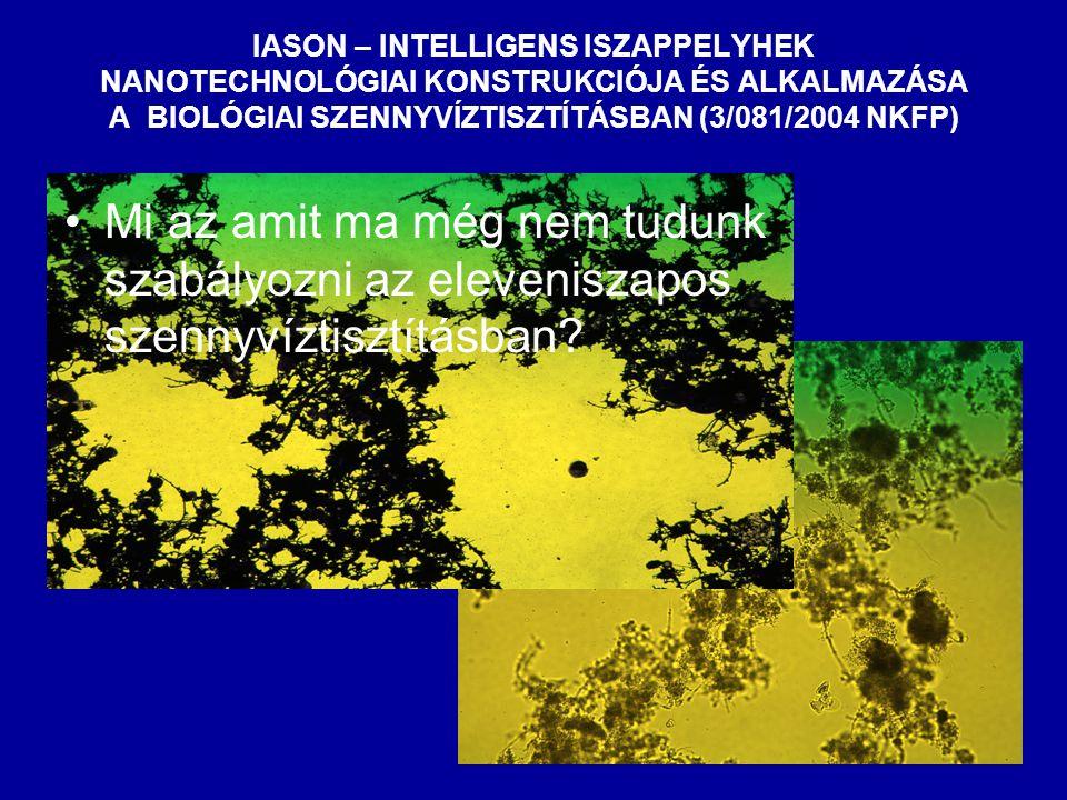 IASON – INTELLIGENS ISZAPPELYHEK NANOTECHNOLÓGIAI KONSTRUKCIÓJA ÉS ALKALMAZÁSA A BIOLÓGIAI SZENNYVÍZTISZTÍTÁSBAN (3/081/2004 NKFP) Mi az amit ma még nem tudunk szabályozni az eleveniszapos szennyvíztisztításban