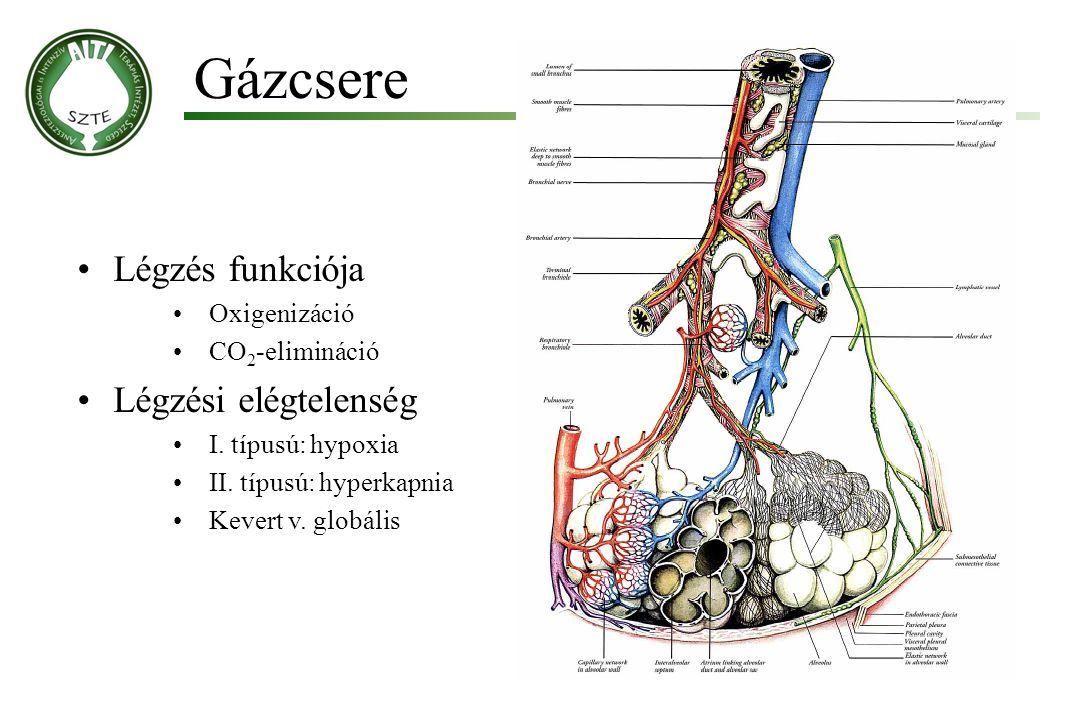 Gázcsere Légzés funkciója Oxigenizáció CO 2 -elimináció Légzési elégtelenség I. típusú: hypoxia II. típusú: hyperkapnia Kevert v. globális