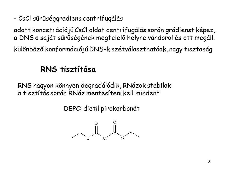 8 - CsCl sűrűséggradiens centrifugálás adott koncetrációjú CsCl oldat centrifugálás során grádienst képez, a DNS a saját sűrűségének megfelelő helyre