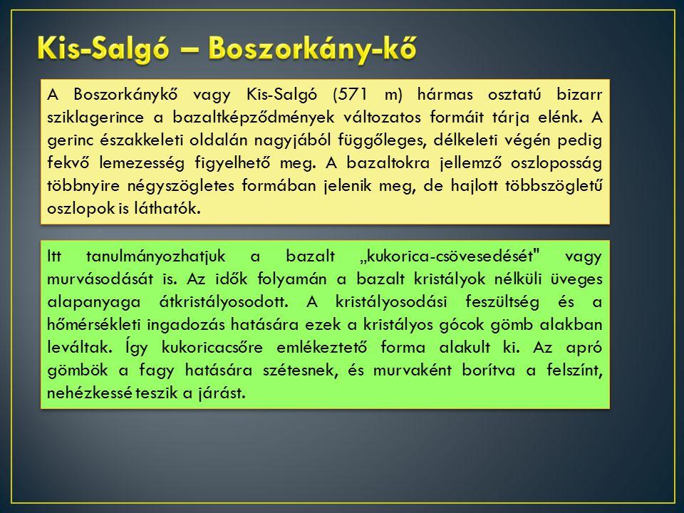 A Boszorkánykő vagy Kis-Salgó (571 m) hármas osztatú bizarr sziklagerince a bazaltképződmények változatos formáit tárja elénk.