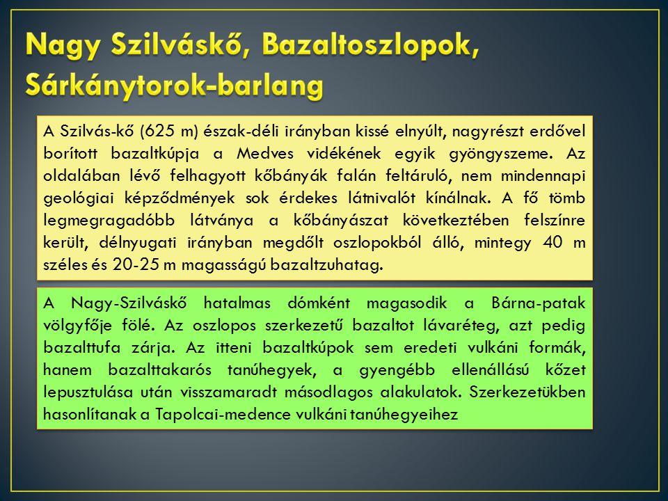 A Szilvás-kő (625 m) észak-déli irányban kissé elnyúlt, nagyrészt erdővel borított bazaltkúpja a Medves vidékének egyik gyöngyszeme.