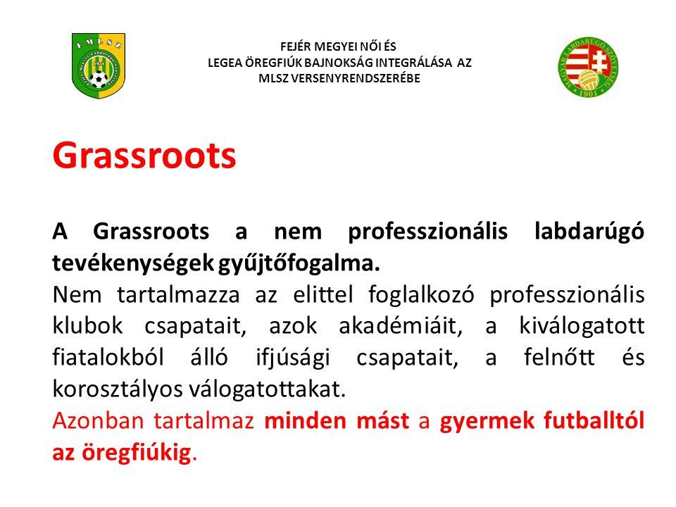 Grassroots A Grassroots a nem professzionális labdarúgó tevékenységek gyűjtőfogalma. Nem tartalmazza az elittel foglalkozó professzionális klubok csap