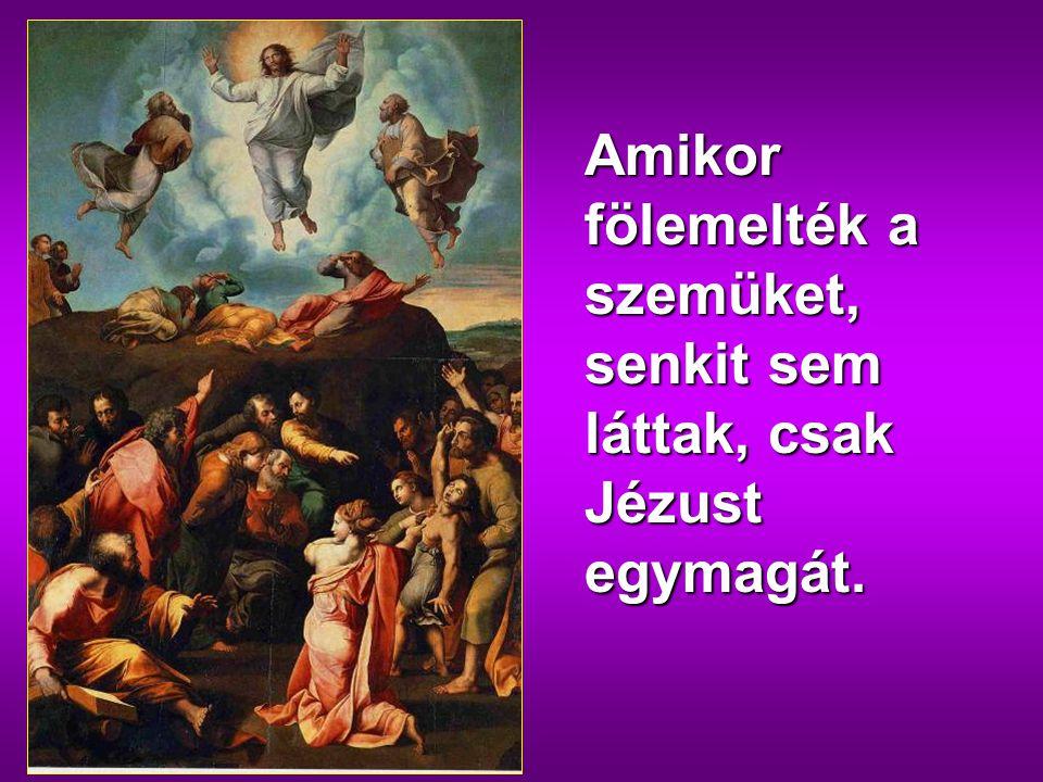 gfdd Jézus odament, megérintette őket és azt mondta:,,Keljetek föl, és ne féljetek!''