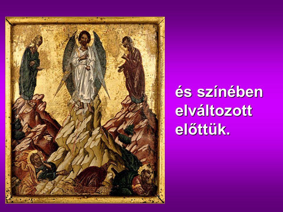 Hat nap múlva Jézus maga mellé vette Pétert, Jakabot és Jánost, a testvérét, és fölvitte őket külön egy magas hegyre,