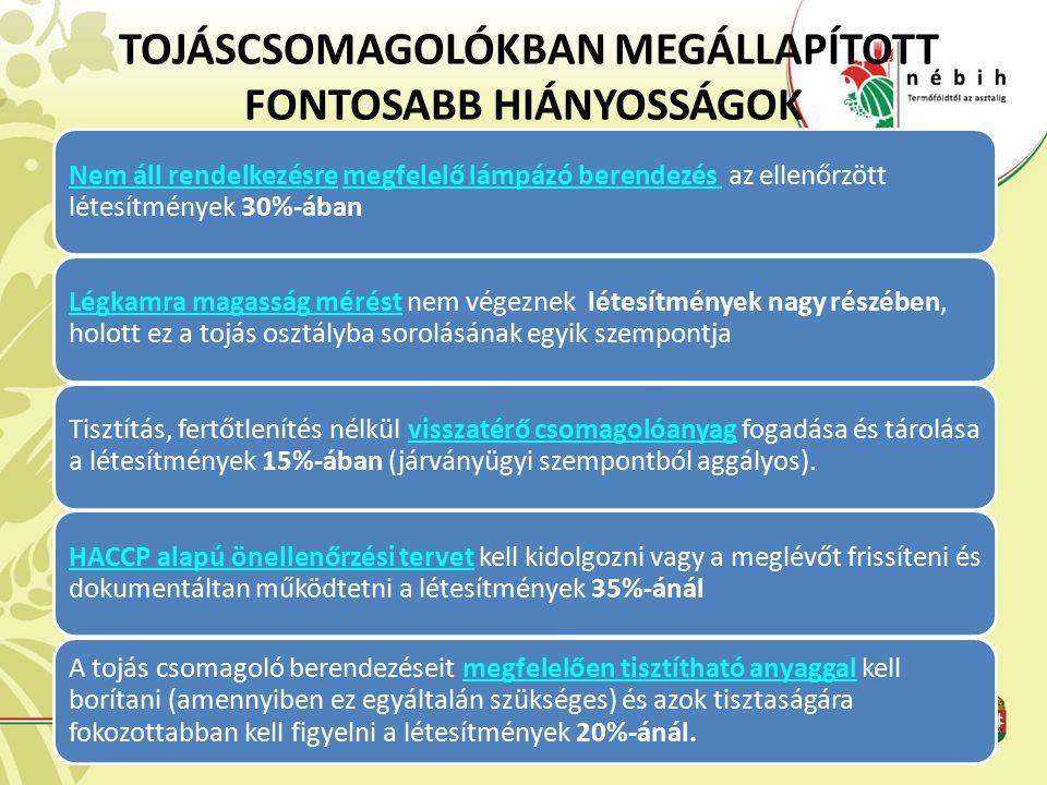 TOJÁSCSOMAGOLÓKBAN MEGÁLLAPÍTOTT FONTOSABB HIÁNYOSSÁGOK Nem áll rendelkezésre megfelelő lámpázó berendezés az ellenőrzött létesítmények 30%-ában Légka