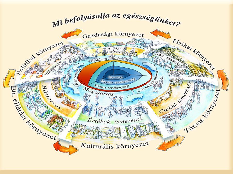 Közösségi színtérprogram készítés folyamata Állapot leírás Életminőség (egészségfejlesztési) stratégia Programok Eredmények, hatások Nyomon követés