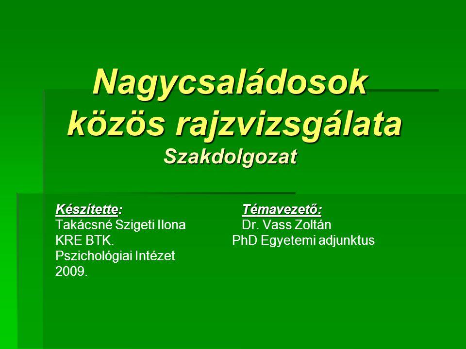 Nagycsaládosok közös rajzvizsgálata Szakdolgozat Készítette: Témavezető: Takácsné Szigeti IlonaDr.