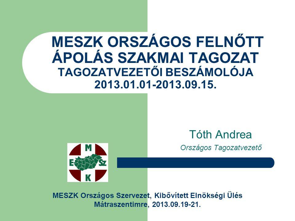 MESZK ORSZÁGOS FELNŐTT ÁPOLÁS SZAKMAI TAGOZAT TAGOZATVEZETŐI BESZÁMOLÓJA 2013.01.01-2013.09.15.