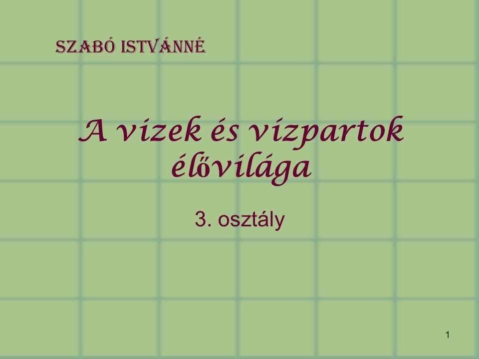1 A vizek és vízpartok él ő világa 3. osztály Szabó Istvánné