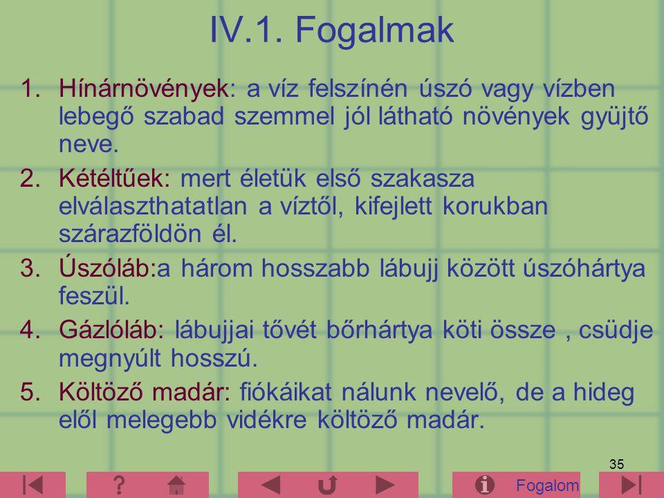 35 IV.1.