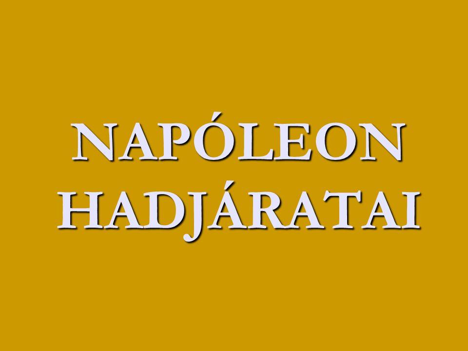 NAPÓLEON HADJÁRATAI