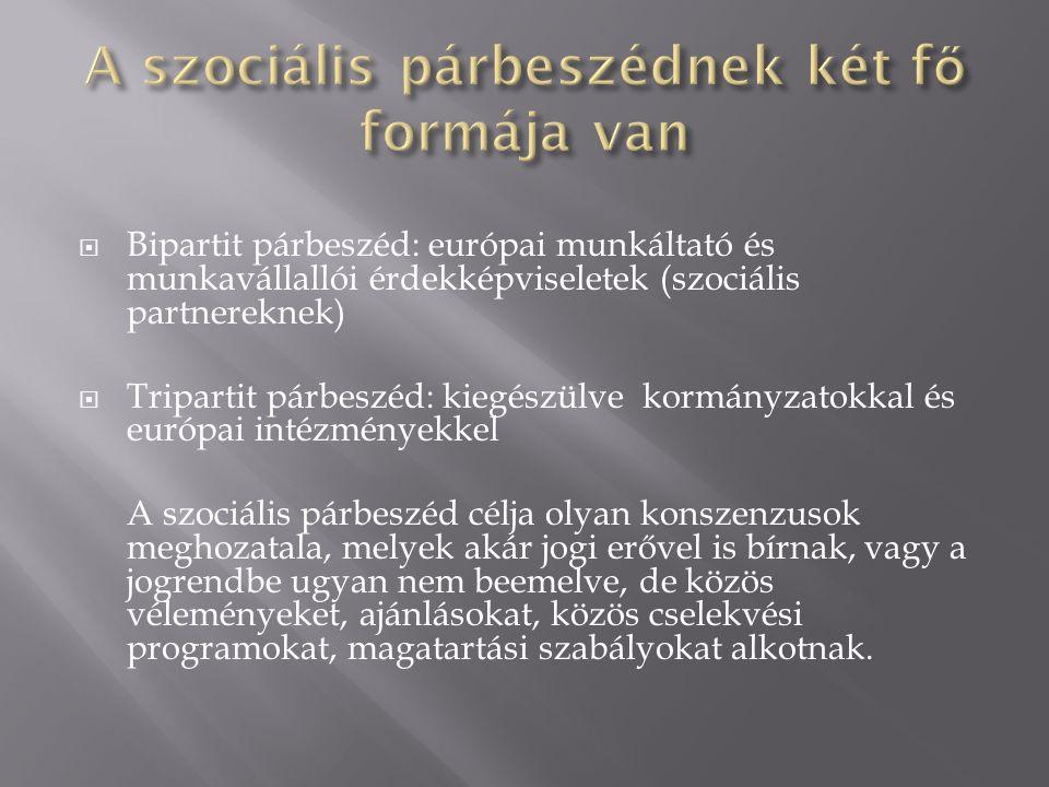  Részmunkaidős foglalkoztatás (Irányelv)  Határozott ideig tartó munkaviszony (irányelv)  Szülői szabadság (irányelv)  Távmunka (autonóm megállapodás)  Munkahelyi stressz (autonóm megállapodás)  Munkahelyi zaklatás és erőszak (autonóm megállapodás)  Befogadó munkaerőpiac (autonóm megállapodás)