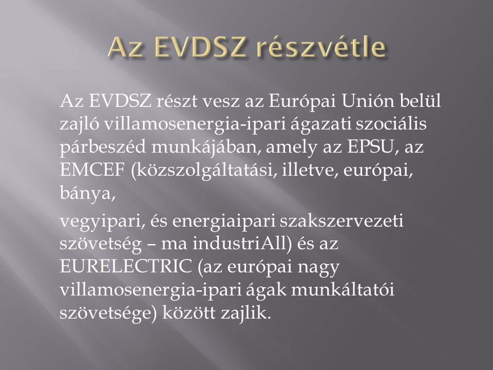 Az EVDSZ részt vesz az Európai Unión belül zajló villamosenergia-ipari ágazati szociális párbeszéd munkájában, amely az EPSU, az EMCEF (közszolgáltatási, illetve, európai, bánya, vegyipari, és energiaipari szakszervezeti szövetség – ma industriAll) és az EURELECTRIC (az európai nagy villamosenergia-ipari ágak munkáltatói szövetsége) között zajlik.