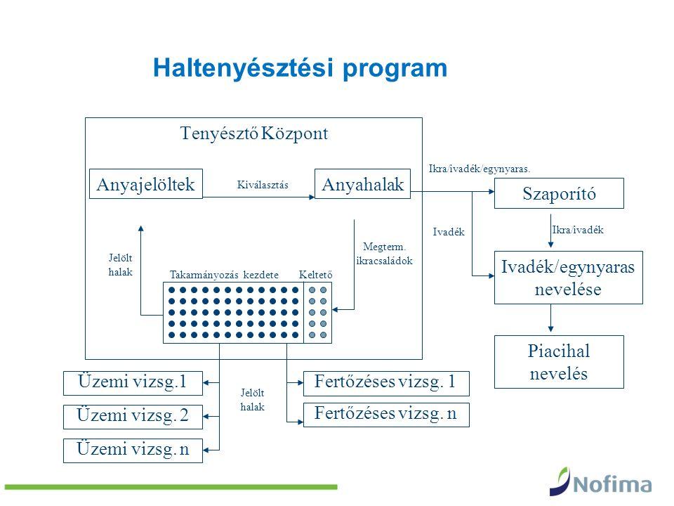Haltenyésztési program Tenyésztő Központ Anyahalak Üzemi vizsg.