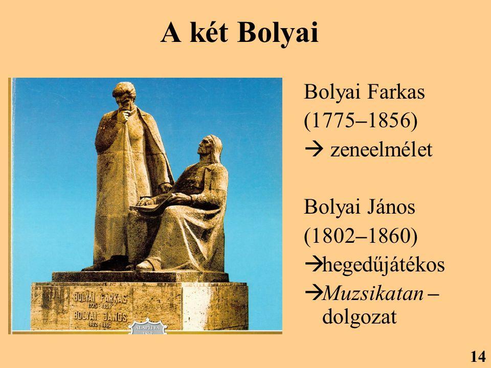 A két Bolyai Bolyai Farkas (1775–1856)  zeneelmélet Bolyai János (1802–1860)  hegedűjátékos  Muzsikatan – dolgozat 14