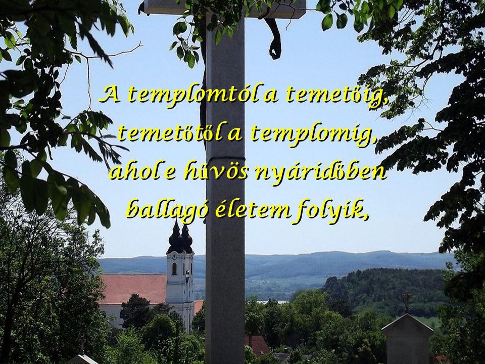A templomtól a temet ő ig, temet ő t ő l a templomig, ahol e h ű vös nyárid ő ben ballagó életem folyik, A templomtól a temet ő ig, temet ő t ő l a templomig, ahol e h ű vös nyárid ő ben ballagó életem folyik,