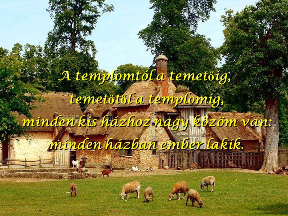 A templomtól a temet ő ig, temet ő t ő l a templomig, minden kis házhoz nagy közöm van: minden házban ember lakik.