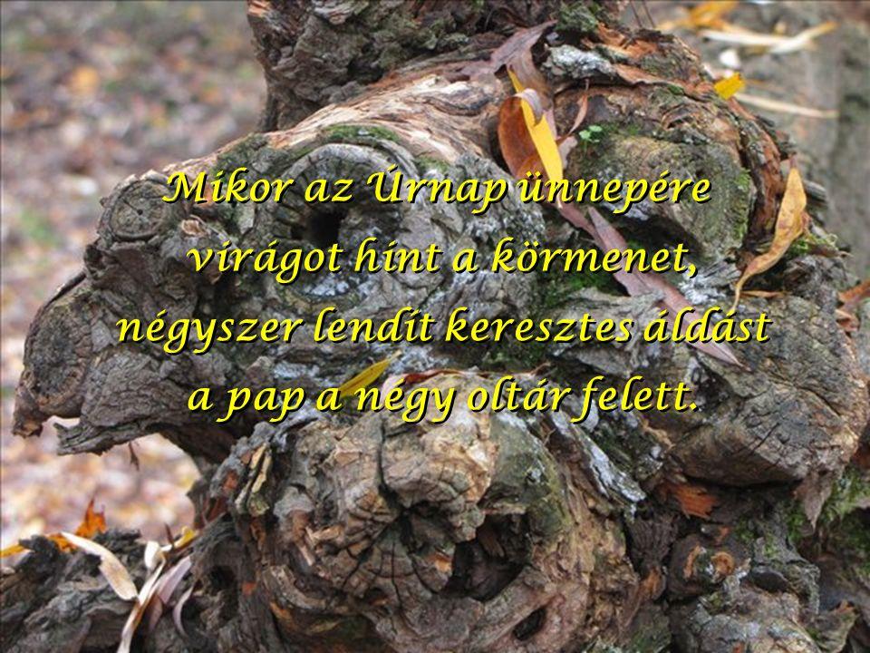 Mikor az Úrnap ünnepére virágot hint a körmenet, négyszer lendít keresztes áldást a pap a négy oltár felett.