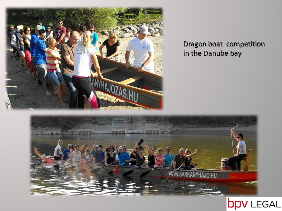 Dragon boat competition in the Danube bay