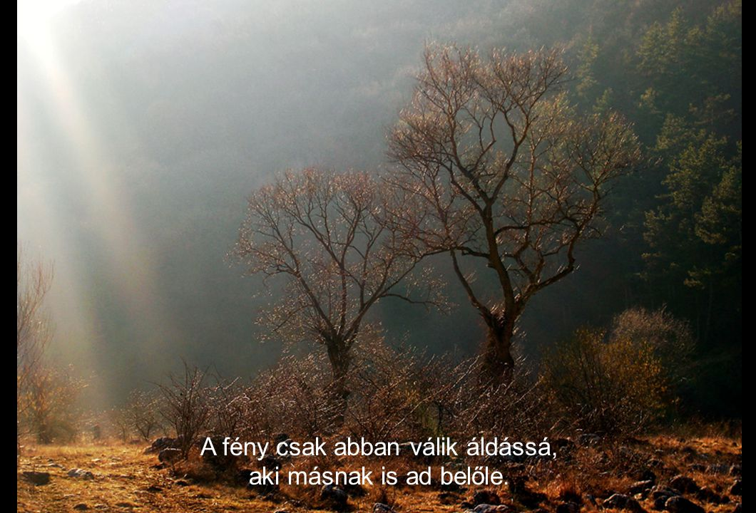A fény csak abban válik áldássá, aki másnak is ad belőle.