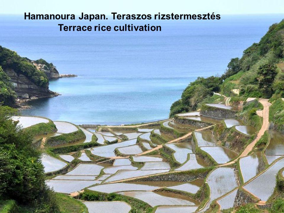 Minamiuonuma Japan