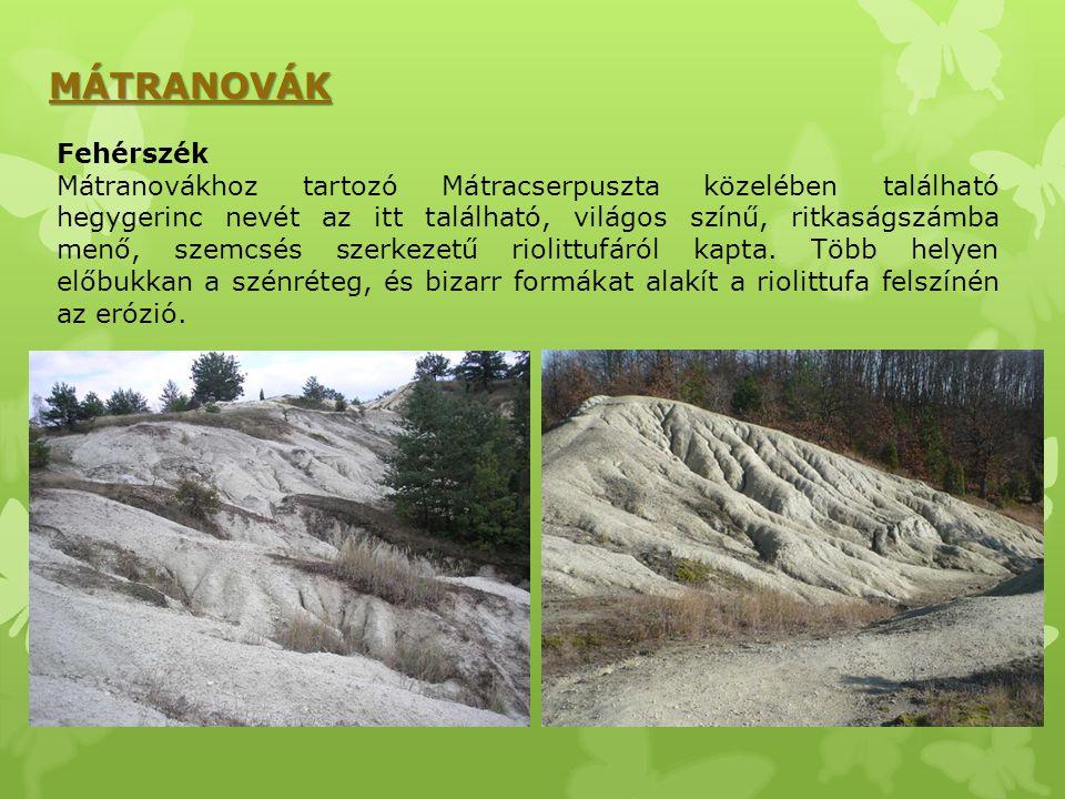 MÁTRANOVÁK Fehérszék Mátranovákhoz tartozó Mátracserpuszta közelében található hegygerinc nevét az itt található, világos színű, ritkaságszámba menő,