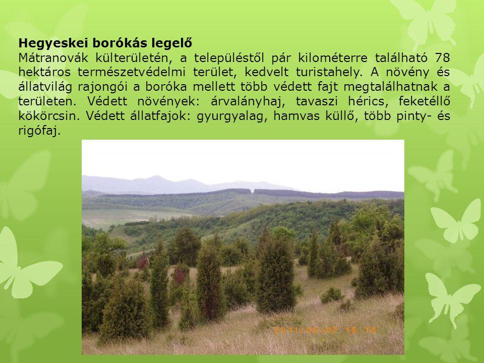 Hegyeskei borókás legelő Mátranovák külterületén, a településtől pár kilométerre található 78 hektáros természetvédelmi terület, kedvelt turistahely.