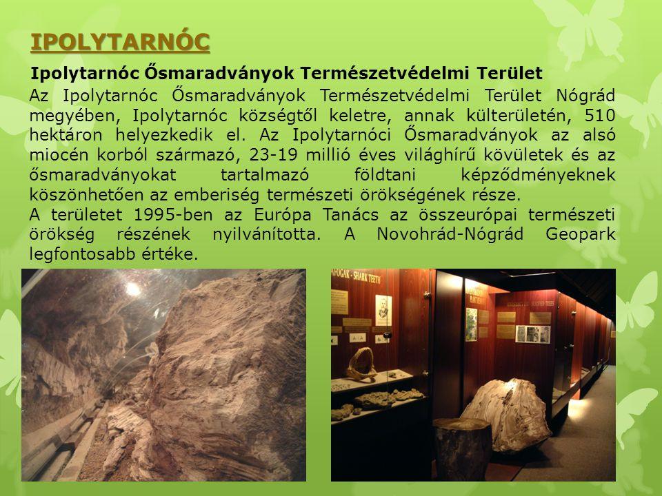 IPOLYTARNÓC Ipolytarnóc Ősmaradványok Természetvédelmi Terület Az Ipolytarnóc Ősmaradványok Természetvédelmi Terület Nógrád megyében, Ipolytarnóc közs