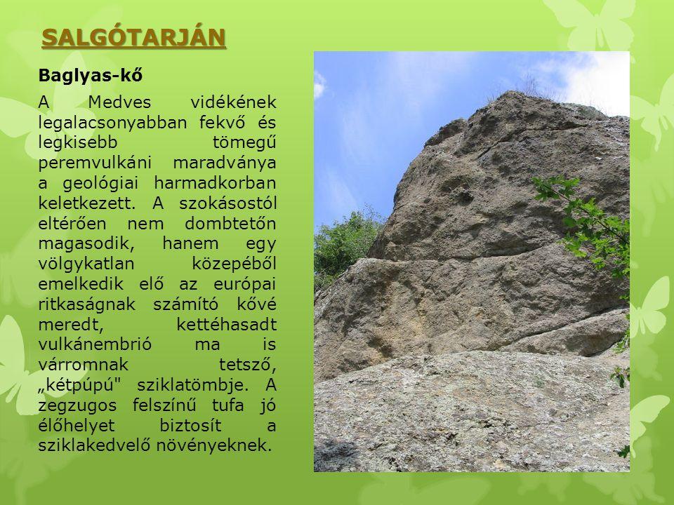 SALGÓTARJÁN Baglyas-kő A Medves vidékének legalacsonyabban fekvő és legkisebb tömegű peremvulkáni maradványa a geológiai harmadkorban keletkezett. A s