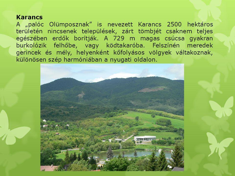 """Karancs A """"palóc Olümposznak"""" is nevezett Karancs 2500 hektáros területén nincsenek települések, zárt tömbjét csaknem teljes egészében erdők borítják."""