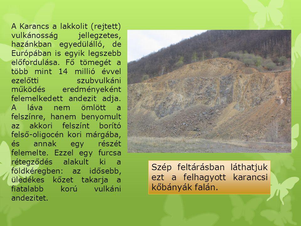 A Karancs a lakkolit (rejtett) vulkánosság jellegzetes, hazánkban egyedülálló, de Európában is egyik legszebb előfordulása. Fő tömegét a több mint 14