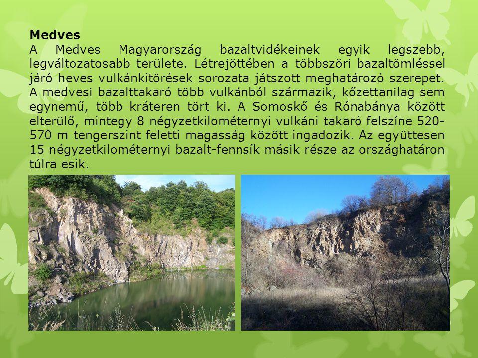 Medves A Medves Magyarország bazaltvidékeinek egyik legszebb, legváltozatosabb területe. Létrejöttében a többszöri bazaltömléssel járó heves vulkánkit
