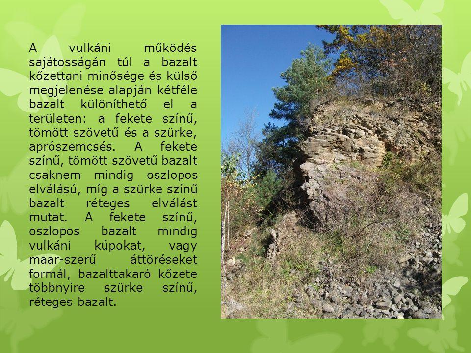 A vulkáni működés sajátosságán túl a bazalt kőzettani minősége és külső megjelenése alapján kétféle bazalt különíthető el a területen: a fekete színű,