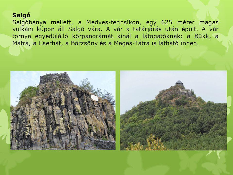 Salgó Salgóbánya mellett, a Medves-fennsíkon, egy 625 méter magas vulkáni kúpon áll Salgó vára. A vár a tatárjárás után épült. A vár tornya egyedüláll