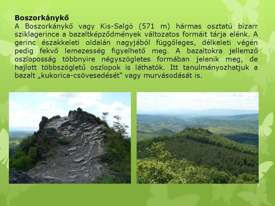 Boszorkánykő A Boszorkánykő vagy Kis-Salgó (571 m) hármas osztatú bizarr sziklagerince a bazaltképződmények változatos formáit tárja elénk. A gerinc é