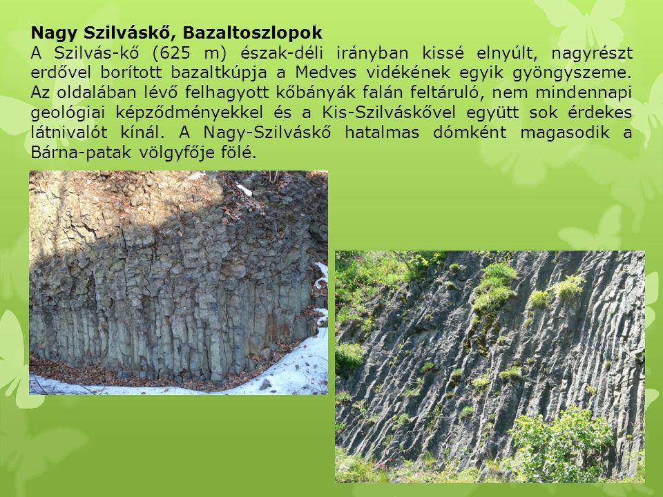Nagy Szilváskő, Bazaltoszlopok A Szilvás-kő (625 m) észak-déli irányban kissé elnyúlt, nagyrészt erdővel borított bazaltkúpja a Medves vidékének egyik