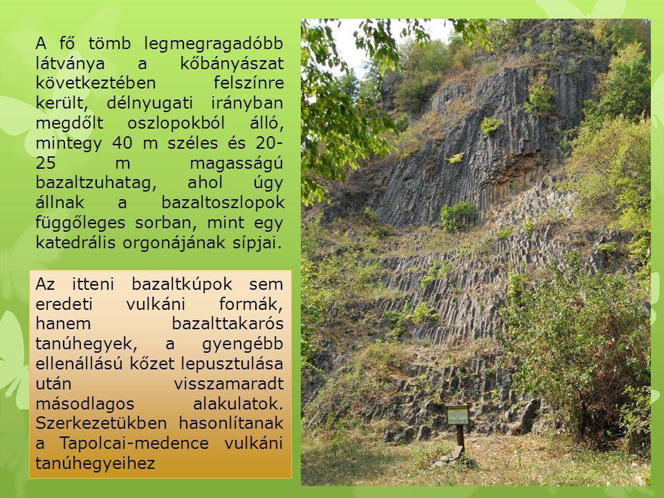 A fő tömb legmegragadóbb látványa a kőbányászat következtében felszínre került, délnyugati irányban megdőlt oszlopokból álló, mintegy 40 m széles és 2