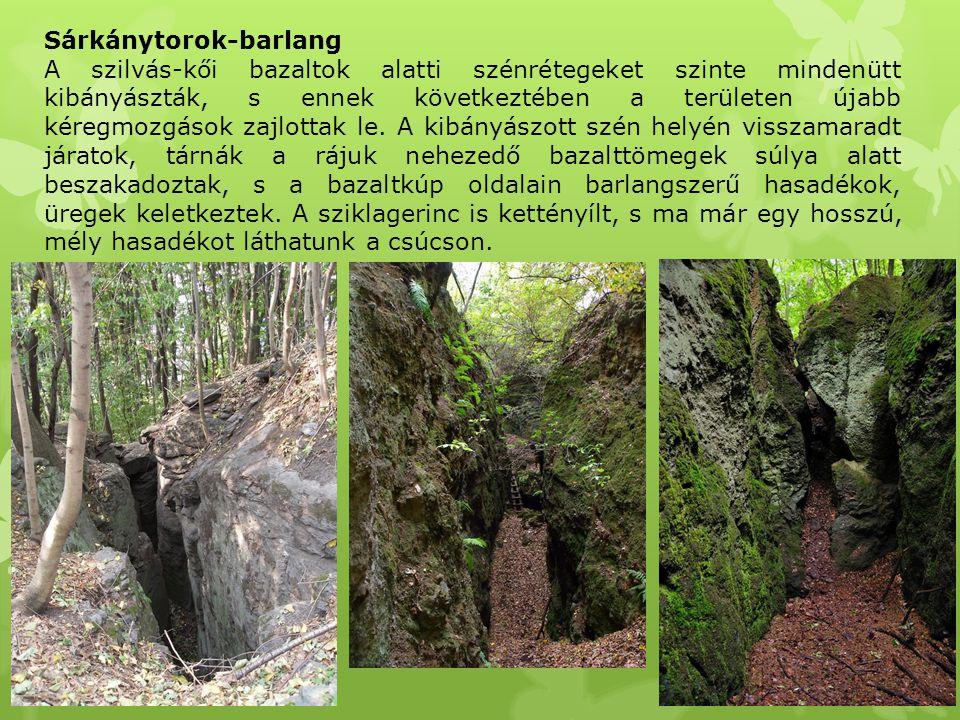 Sárkánytorok-barlang A szilvás-kői bazaltok alatti szénrétegeket szinte mindenütt kibányászták, s ennek következtében a területen újabb kéregmozgások