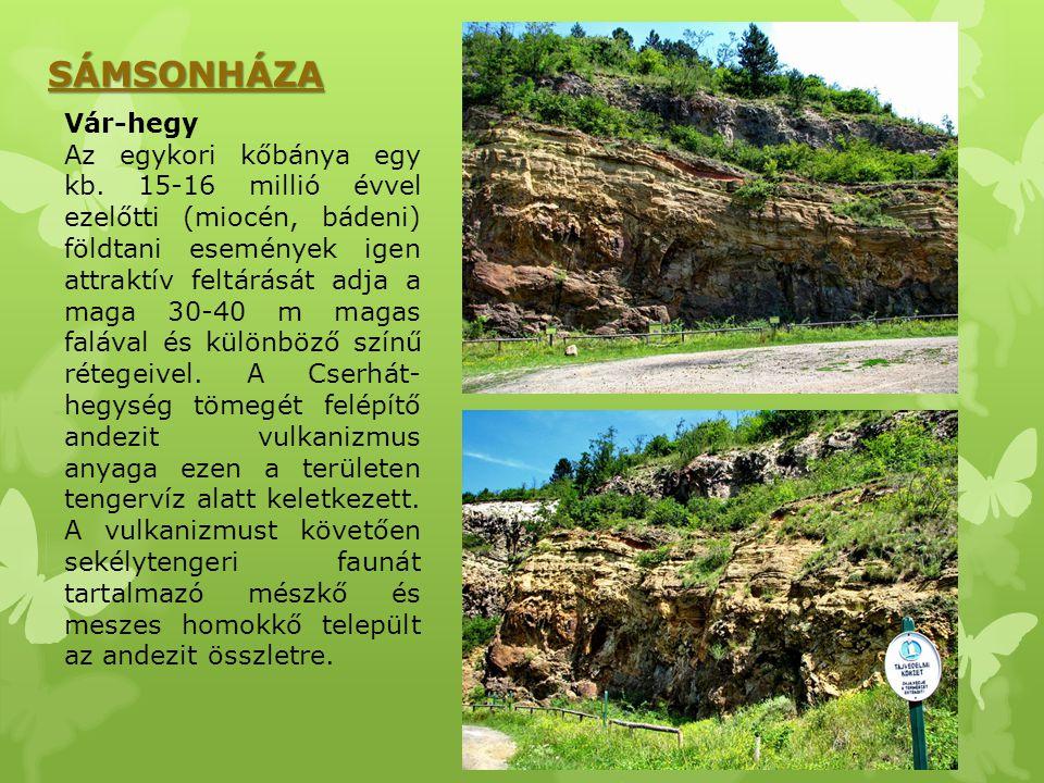SÁMSONHÁZA Vár-hegy Az egykori kőbánya egy kb. 15-16 millió évvel ezelőtti (miocén, bádeni) földtani események igen attraktív feltárását adja a maga 3