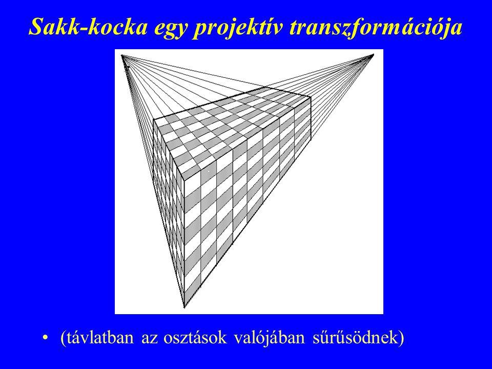 Sakk-kocka egy projektív transzformációja (távlatban az osztások valójában sűrűsödnek)