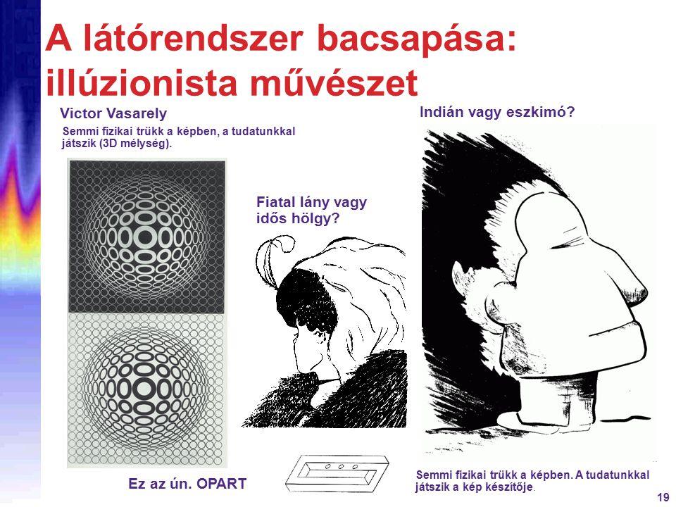 19 A látórendszer bacsapása: illúzionista művészet Semmi fizikai trükk a képben. A tudatunkkal játszik a kép készítője. Victor Vasarely Semmi fizikai