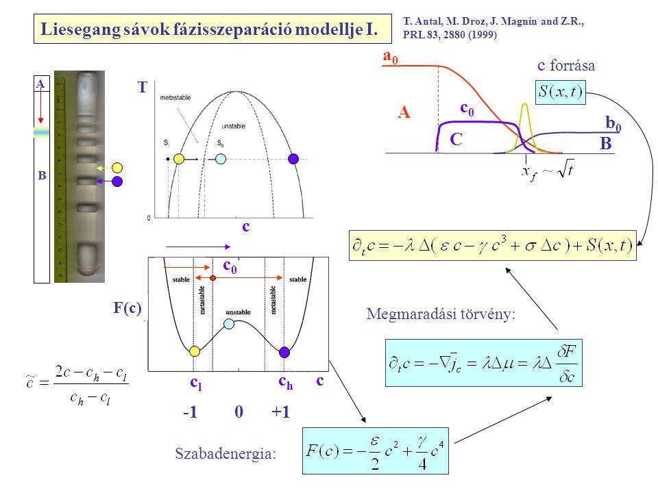 Liesegang sávok fázisszeparáció modellje I.