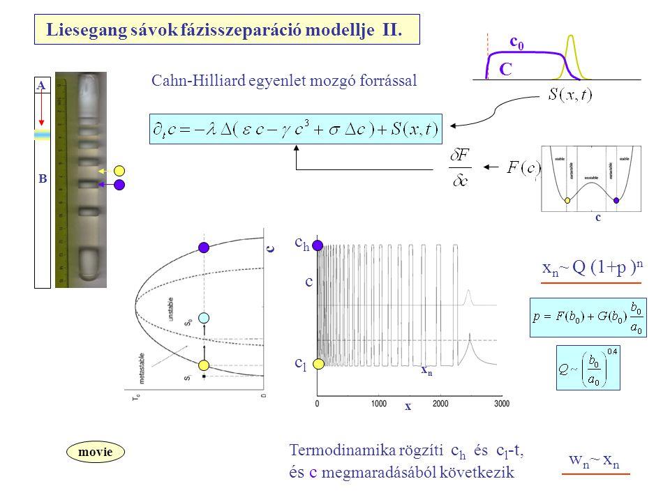c c c x xnxn x n ~ Q (1+p ) n p = p(a 0,b 0 ) Termodinamika rögzíti c h és c l -t, és c megmaradásából következik movie A B Cahn-Hilliard egyenlet mozgó forrással w n ~ x n chch clcl Liesegang sávok fázisszeparáció modellje II.