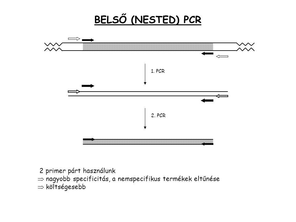 BELSŐ (NESTED) PCR 1. PCR 2. PCR 2 primer párt használunk  nagyobb specificitás, a nemspecifikus termékek eltűnése  költségesebb