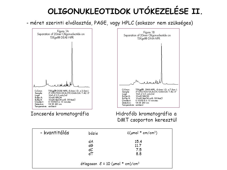 - méret szerinti elválasztás, PAGE, vagy HPLC (sokszor nem szükséges) OLIGONUKLEOTIDOK UTÓKEZELÉSE II. Ioncserés kromatográfiaHidrofób kromatográfia a