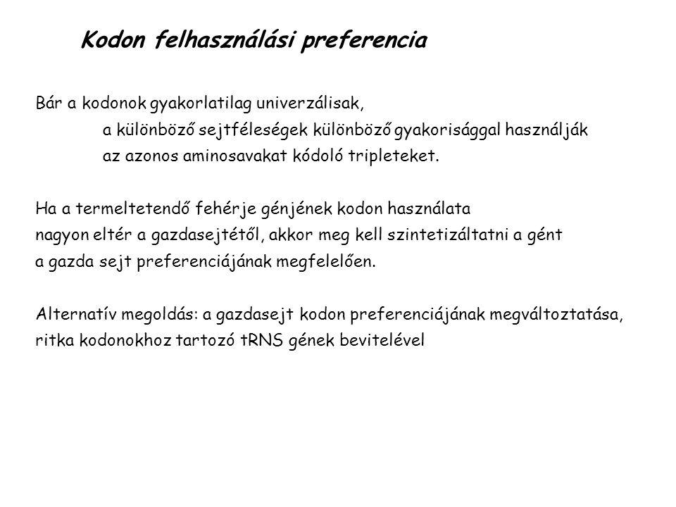 Kodon felhasználási preferencia Bár a kodonok gyakorlatilag univerzálisak, a különböző sejtféleségek különböző gyakorisággal használják az azonos amin
